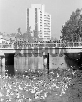 1985年12月19日 盘龙江畔 新华社记者朱于湖摄