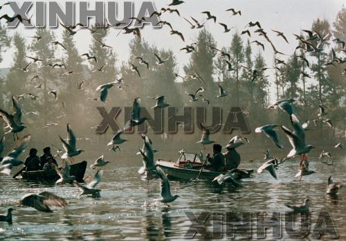 1989年9月25日,翠湖公园。新华社记者高光德摄