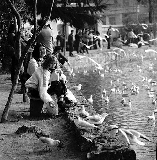 1993年1月,游客在翠湖公园观赏红嘴鸥。新华社记者杨宗友新华社记者杨宗友摄