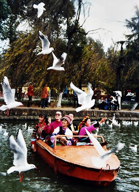 1993年春节,翠湖公园。新华社记者陈海宁摄