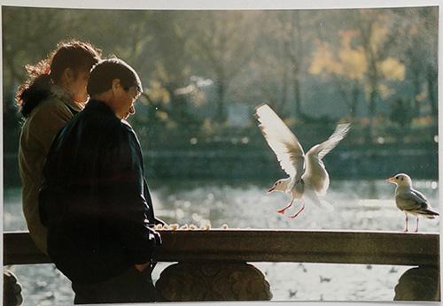 1996年,翠湖公园。市民在翠湖公园喂食红嘴鸥。作者:苏宏
