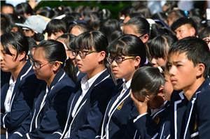 10月28日红河县法院机动车交通事故责任纠纷案