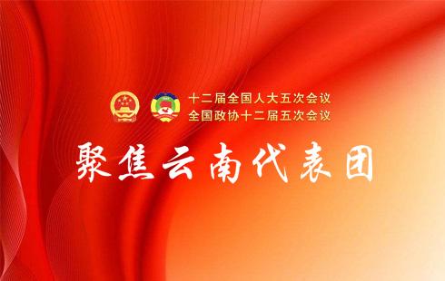 """雲南代表團全體會議審議""""兩高""""報告"""