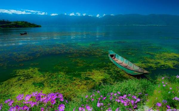 雲南大理:引入PPP模式推動洱海保護治理