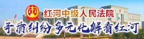 红河州中级人民法院