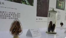 """朱有勇:用田野實踐在雲嶺大地上書寫""""最美篇章"""""""