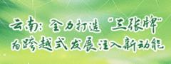 """雲南:全力打造""""三張牌"""" 為跨越式發展注入新動能"""