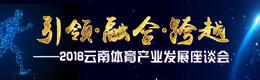雲南體育産業發展座談會