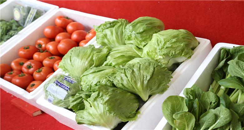 農博會上展示出的新鮮果蔬