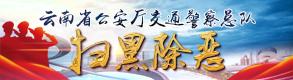 雲南省公安廳百日安全行動