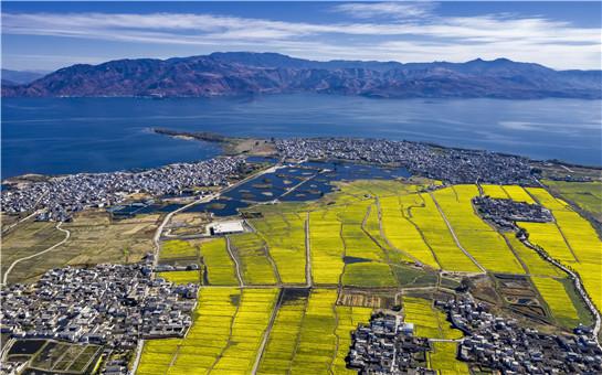 雲南大理:民族團結之花競相綻放