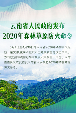 雲南省人民政府發布2020年森林草原防火命令