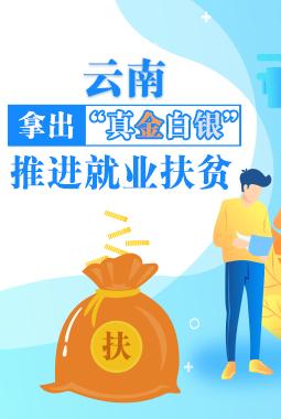"""雲南:拿出""""真金白銀"""",推進就業扶貧"""