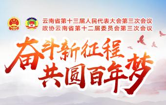 奮鬥新徵程 共圓百年夢——2020雲南兩會專題報道