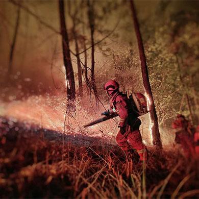 雲南森林消防全力撲救香格裏拉森林火災