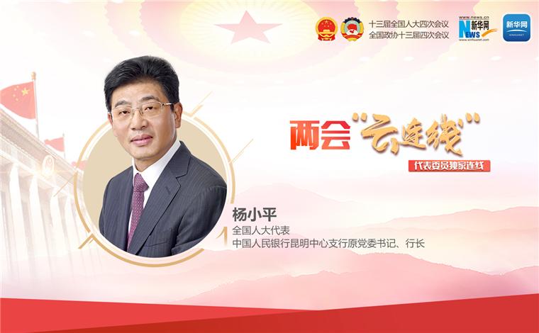 楊小平:全力支持服務好雲南主動融入新發展格局