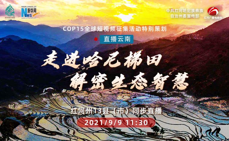 【COP15全球短視頻徵集活動——直播雲南】走進哈尼梯田 解密生態智慧