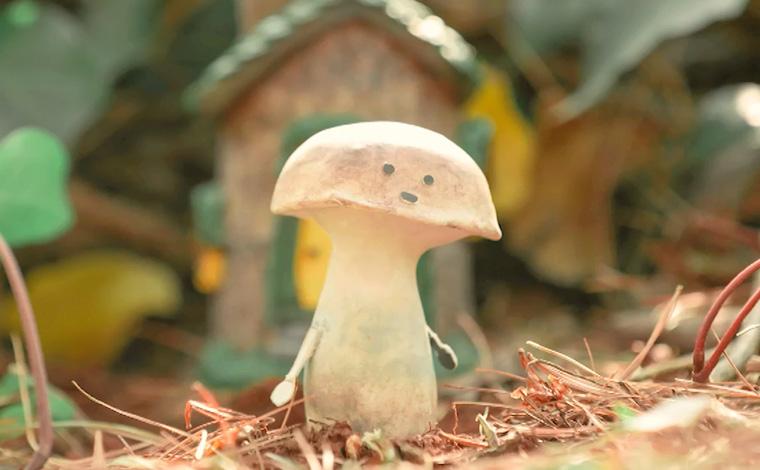 【COP15全球短視頻徵集作品展示】蘑菇王國