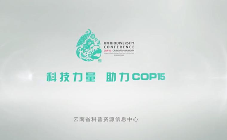 【COP15全球短視頻徵集作品展示】科技力量助力COP15