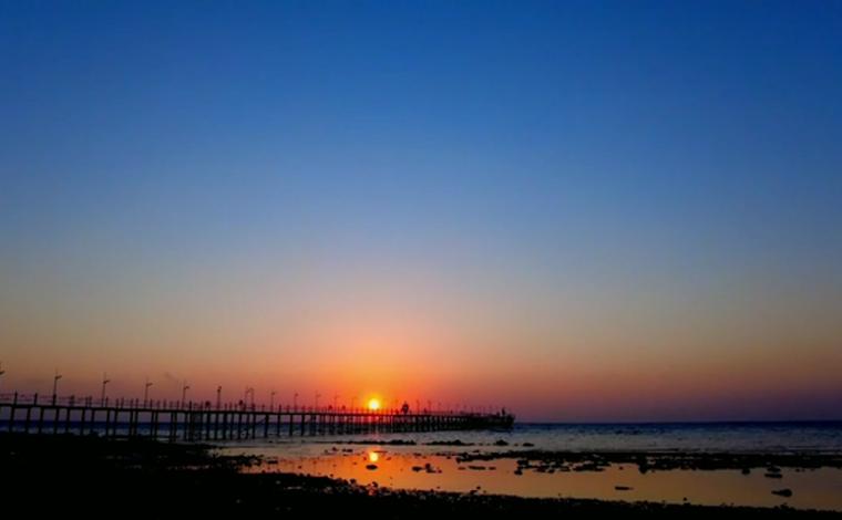 【COP15全球短視頻徵集作品展示】埃及紅海