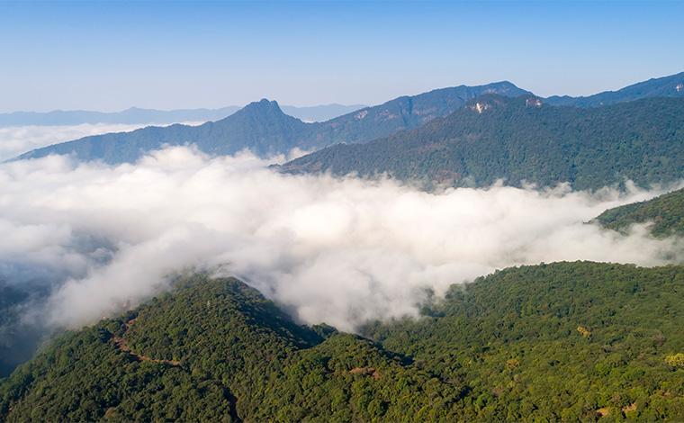 【COP15全球短視頻徵集作品展示】來自普洱的天籟之音
