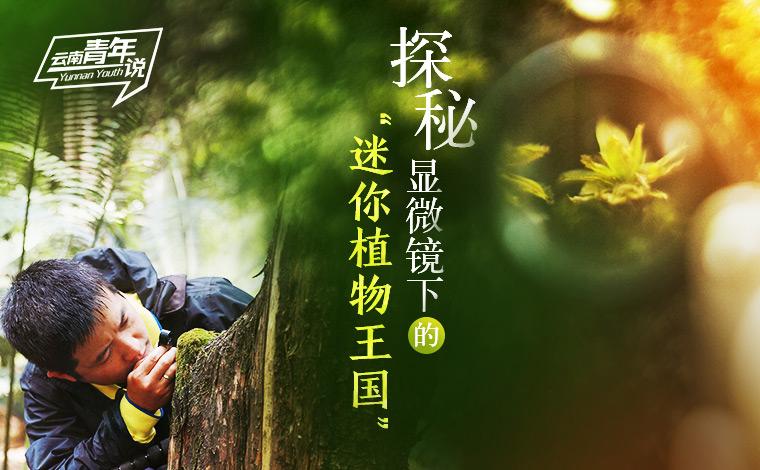 """【雲南青年説】探秘顯微鏡下的""""迷你植物王國"""""""