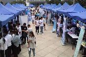 雲南省開展就業服務活動 為雲嶺大學生就業護航