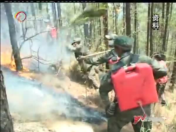 昆明市:森林公安局查处侦办10起森林火灾案件