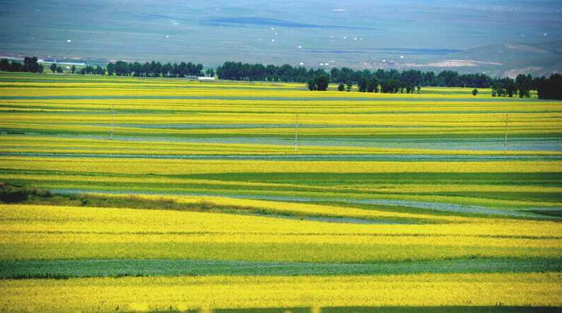 云南农业�y�k��d_《云南农业—在希望的田野上》大型图片展