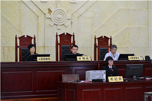审判长、人民陪审员依法组成合议庭