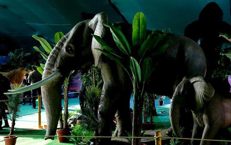印度舉辦機器動物展