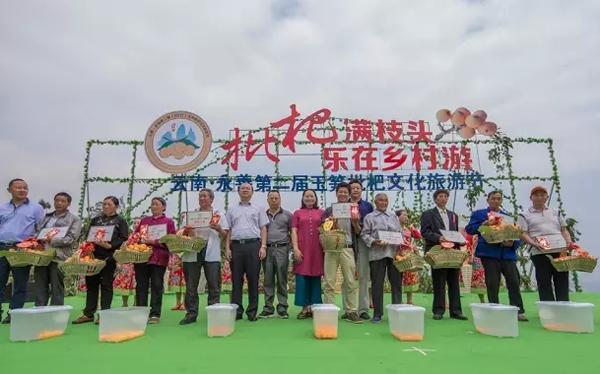 永善玉笋枇杷文化旅游节开门迎客
