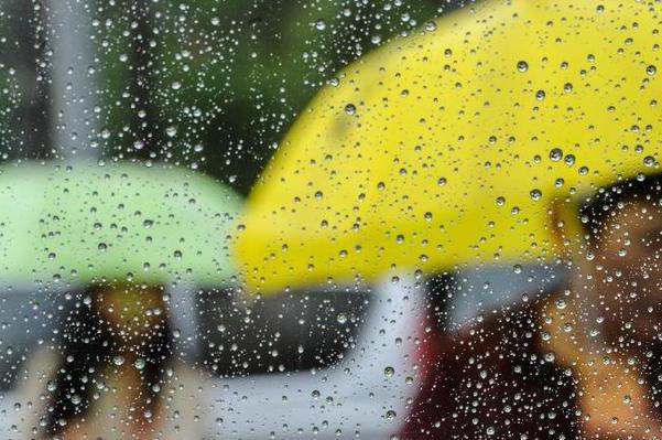 昆明气象灾害防御条例征意见