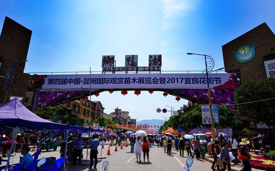《2017宜良花街節》