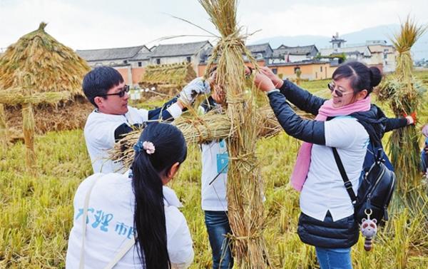 大理举办首届稻米文化艺术节