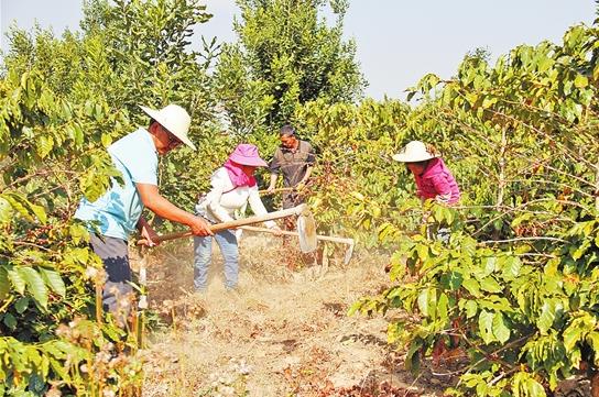 转型发展 富农兴业