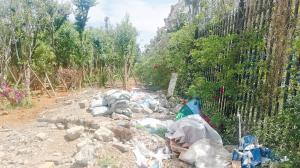 垃圾堆放无人理 市民河边忙洗车