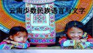 雲南省少數民族語言係屬表