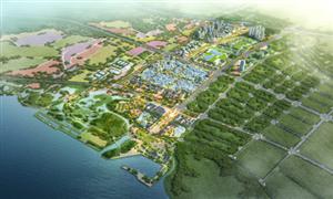 綠色高鐵經濟助推呈貢區加速鬥南花卉特色小鎮建設
