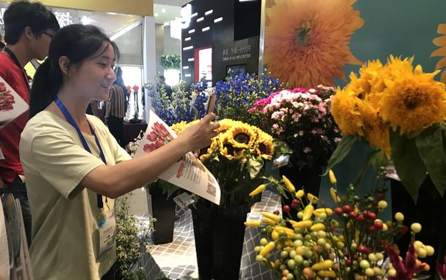 第十九届中国昆明国际花卉展闭幕