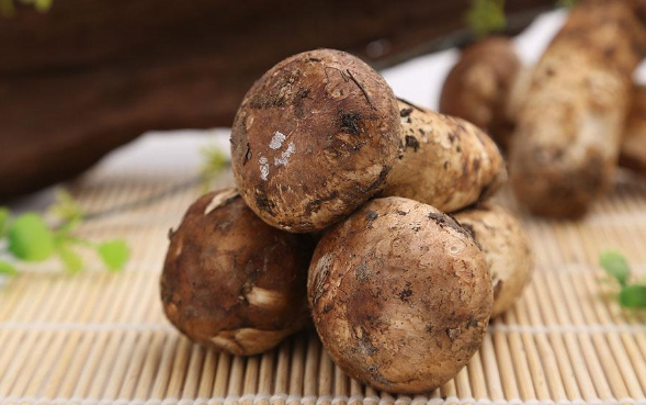 雲南昆明:野生菌大降價松茸低至70元