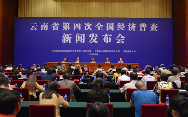 云南省第四次全国经济普查-新华网云南频道