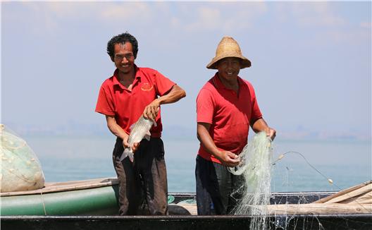 滇池捕魚忙 漁民喜豐收