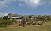 西盟縣永俄寨:佤族風情引遊客