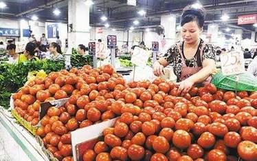 昆明:多種蔬菜價格上漲 一公斤番茄十元