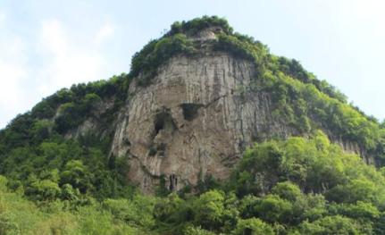 金平石樁村:特色産業促農增收