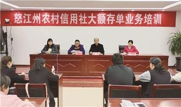 雲南省農村信用社聯合社怒江辦事處舉辦大額存單業務培訓