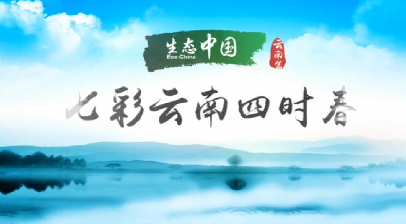生態中國·雲南篇 七彩雲南四時春