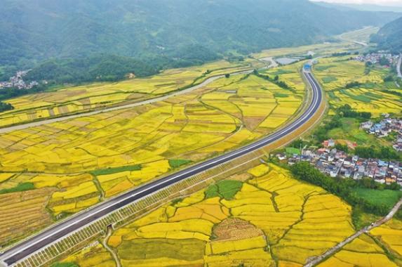 騰隴高速建設順利推進