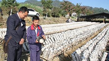 梁河農商行七種扶貧模式全面提升金融服務質效